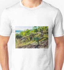 Cretaceous world T-Shirt