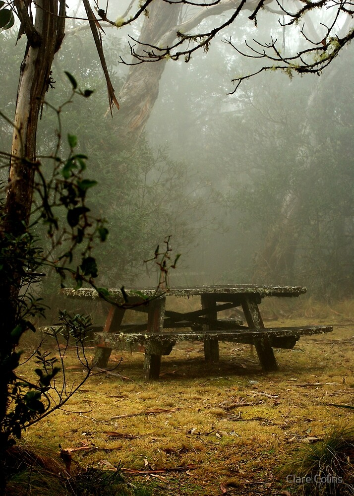 alone on a foggy mountain top by Clare Colins