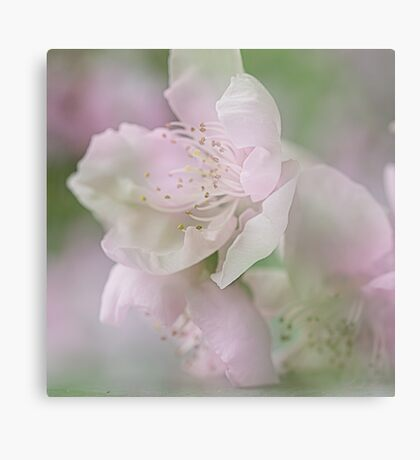 All pink & girly Metal Print