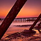 Rusting Relic #3 by bazcelt