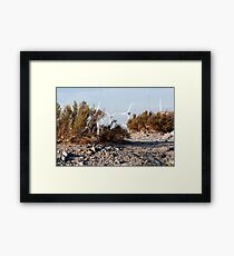 Dry Brush Framed Print