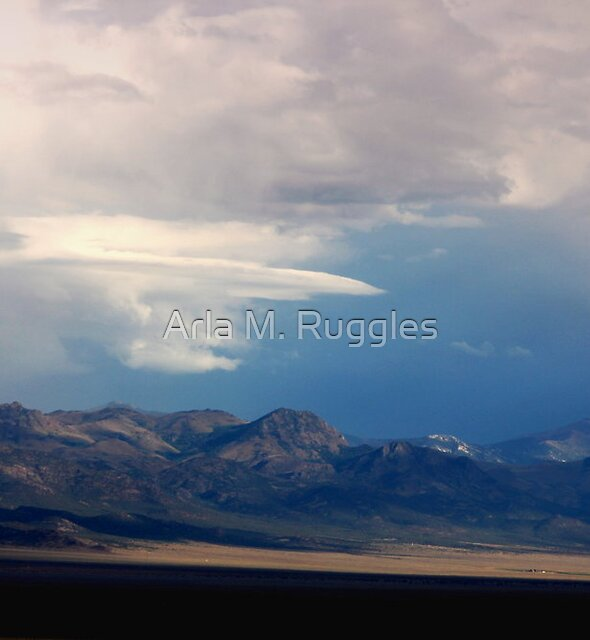 The Truth Is Out There by Arla M. Ruggles