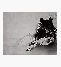 Vulture Photographic Print