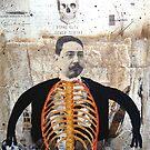 EL COLECCIONISTA (the collector) by Alvaro Sánchez