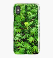 Marijuana (Weed) iPhone Case