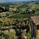 San Gimignano  by Lisa Williams