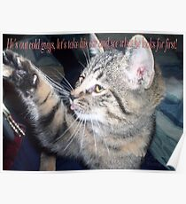 cat humour Poster
