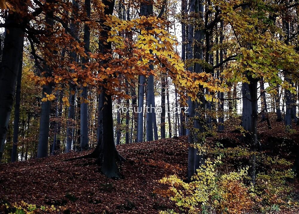 Autumn forest by RosiLorz