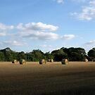 Round Straw Bales by KatDoodling