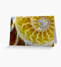 Roots (Ammolite) Greeting Card
