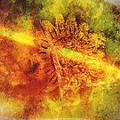 """Light Struck"" by Bruce Jones"
