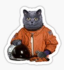 Astrocat Sticker