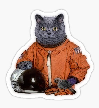 Astrocat Sticker