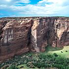 Canyon De Chelly National Monument by George I. Davidson