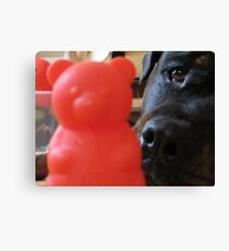 Best toy! Canvas Print