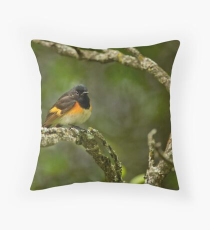 American Redstart Throw Pillow