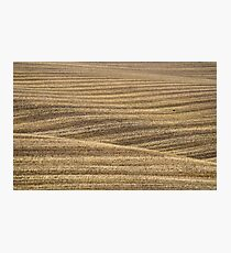 Rolled Wheat, North Yorks Moors National Park Photographic Print