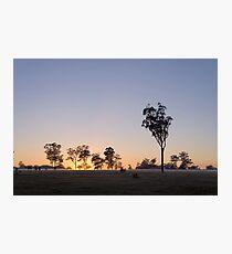 Susan River Sunrise Photographic Print