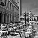 Piazzetta San Marco, Venice by Rodney Johnson