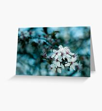 Hello blossom Greeting Card