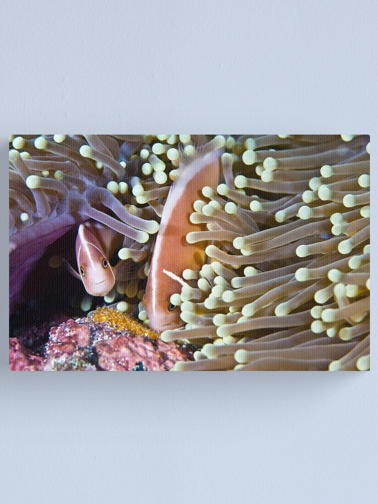 Alternate view of Devoted Canvas Print
