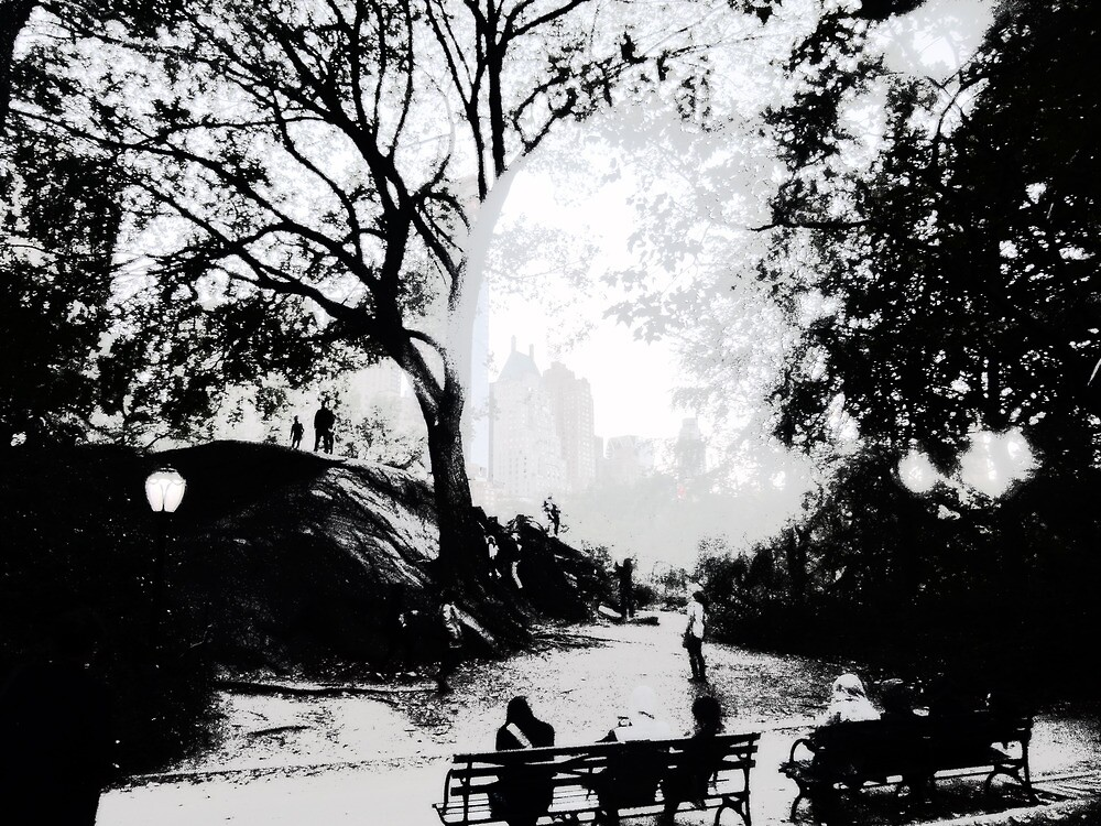Central Park Structured by Benedikt Amrhein