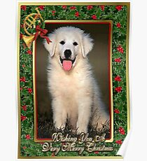 Great Pyrenees Dog Christmas Poster