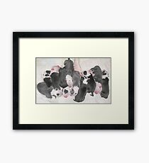 New Puppies For Laurie and Viv ~ Framed Print