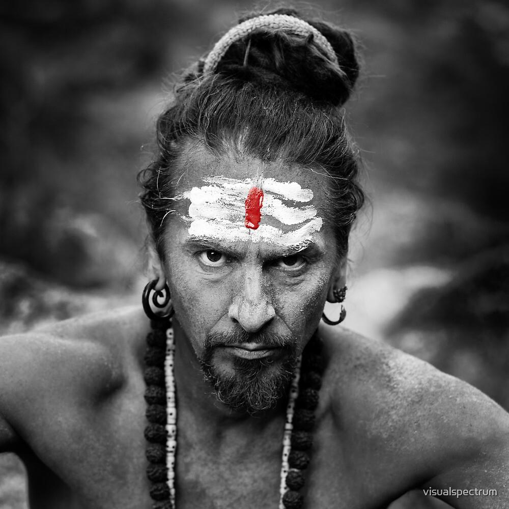 Serious Yogi by visualspectrum