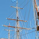 'Climbing the Mast!   Festival of Tall Ships, Port Adelaide. by Rita Blom