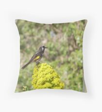 New Holland Honeyeater on Yellow bloom. 'Arilka' Throw Pillow