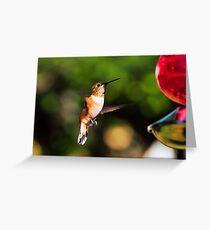 Orange Rufous Female Greeting Card