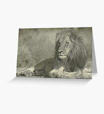 Sketch pencil portrait lion Greeting Card