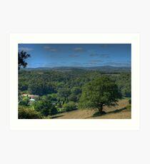 Oaktree - Dartmoor Art Print