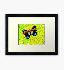 Butterfly on Flower Oil Pastel Framed Print