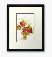 autumn apples watercolor Framed Print