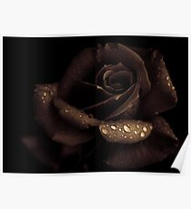 Nutella rose with agave syrup Poster