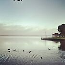Lakeside Fog, Ballarat. by Craig Mitchell