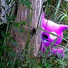 Peeking. by Paul Rees-Jones