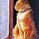 Tabby's Favorite Window by JennyArmitage