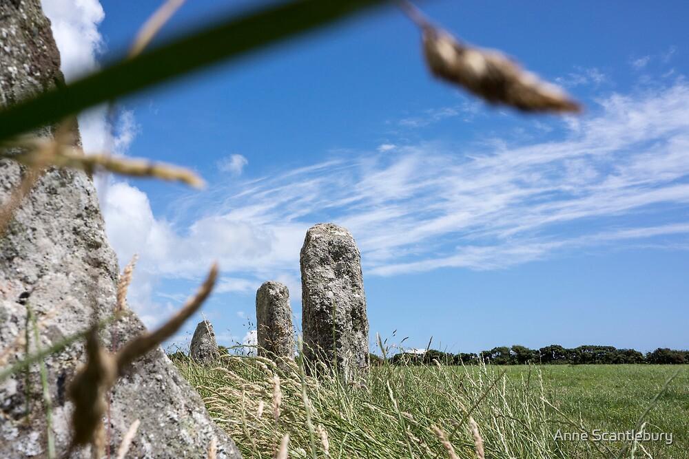 stone circle by Anne Scantlebury