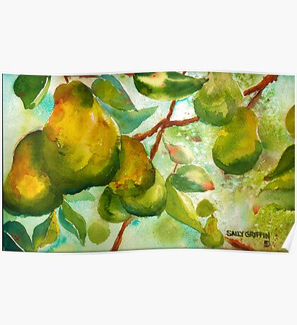 Pear Season Poster