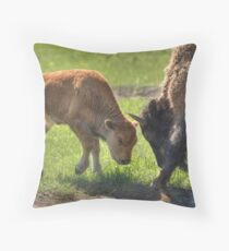 Little Big Bull - The Challenge Throw Pillow