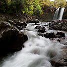 Tawhai Falls by Kylie  Sheahen