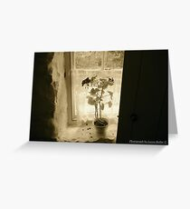 Window on the Past, Cultra, County Down. Greeting Card