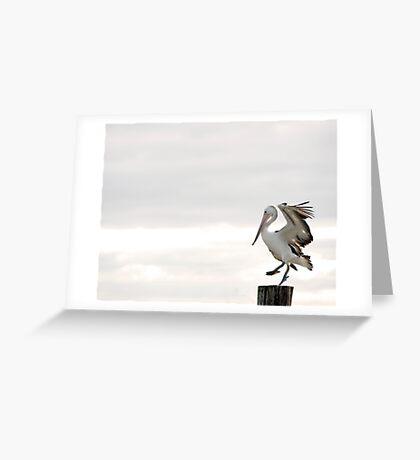 Pelican Dance Greeting Card