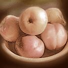 Fruit in Sepia by Ginny Schmidt