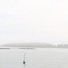 Mist by jroch