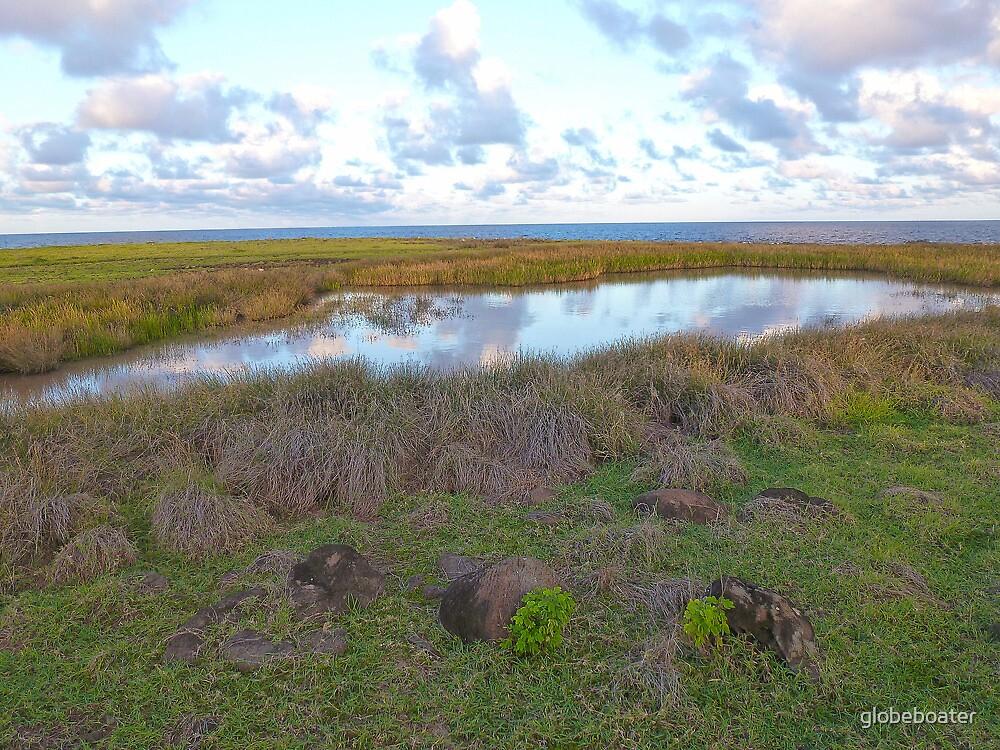 small pond on Frigate Island by globeboater