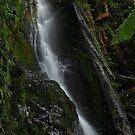 Unknown Waterfall #3 by Simon Penrose